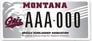 Montana Grizzlies license plate